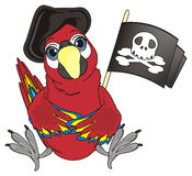 Parrot with a flag. Pirate parrot in black hat sit with black flag with skull and bones Royalty Free Stock Photography