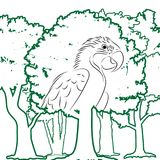 Parrot in forest vector illustration