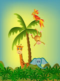 Parrot, giraffe, elephant and monkey Royalty Free Stock Photos