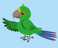 Parrot. An illustration of green parrot Stock Photography