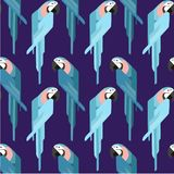 Cute parrot - vector illustration flat design. royalty free illustration