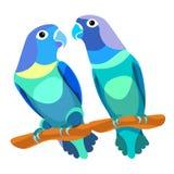 Parrot lovebirds couple sitting head turned blue. vector illustr Royalty Free Stock Photos