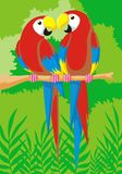 Parrot Lovers. A colorful and romantic illustration of parrot lovers in a rain-forest background stock illustration