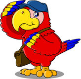 Parrot mailman. Cute cartoon of parrot  mailman Royalty Free Stock Image