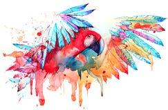 Parrot. Painting of bright bird in flight Stock Image