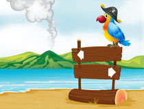 A parrot with a pirate hat above the wooden signboard Stock Image