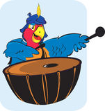 Parrot playing drum Stock Image