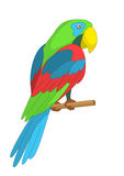 Parrot on a pole Royalty Free Stock Photos