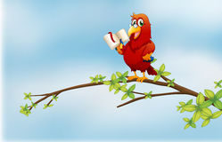 A parrot reading above a branch of a tree Royalty Free Stock Image