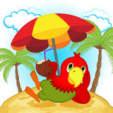 Parrot resting on beach Royalty Free Stock Photography