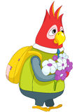 Parrot Schoolboy. Stock Image