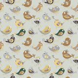 Parrot  seamless colorful pattern Stock Images