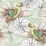Parrot. Seamless pattern Stock Image