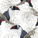 Parrot. Seamless pattern Stock Photography