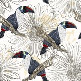 Parrot. Seamless pattern Stock Photo