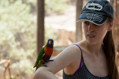 Parrot sits on the hand of a young woman at the Australian Zoo Gan Guru in Kibbutz Nir David, in Israel Stock Photos