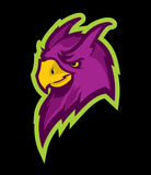 Parrot sport mascot. Logo style parrot head mascot, colored version. Great for sports logos & team mascots Royalty Free Stock Photo