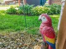 Parrot statue on rocks royalty free stock photos