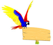 Parrot on the top board Royalty Free Stock Images