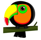 Parrot. Toucan. Isolated on white Stock Photography