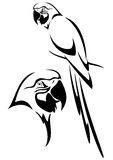 Parrot. Tropical parrot and bird head black and white vector outline stock illustration