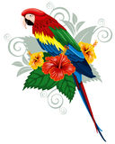 Parrot and tropical flowers vector illustration