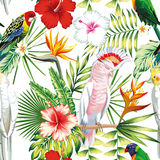 Parrot tropical flowers and leaves seamless pattern white backgr Royalty Free Stock Image