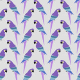 Parrot vector art background design for fabric and decor Royalty Free Stock Images