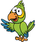 Parrot. Vector illustration of cartoon parrot royalty free illustration