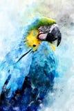 Parrot - watercolor illustration portrait stock image