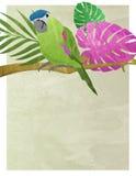 Parrot Watercolor Invitation Poster Print. Parrot Party Poster Invitation Art Royalty Free Stock Photos