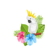 Parrot White Cockatoo with Colorful Exotic Flowers Blossom. And Tropical Leaves, Isolated on White Background - Illustration Vector stock illustration