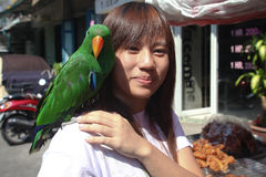 Parrot and woman. BANGKOK - JANUARY 14. Woman with green parrot on shoulder bought in Chatuchak market on January 14, 2012 in Bangkok, Thailand. Chatuchak is Royalty Free Stock Photo