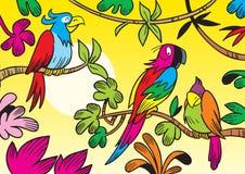 parrots тропическое Стоковая Фотография