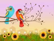 Parrots in love on branches Royalty Free Stock Image