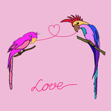 Parrots love. Vector illustration background to Valentin`s day with two parrots in love Royalty Free Stock Photography