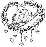 Parrots Lovebirds on a Branch. Romantic image of a pair of parrots lovebirds, line drawing Royalty Free Stock Images