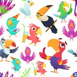 Parrots pattern. Toucan tropical colored birds summer exotic seamless vector illustrations in cartoon style royalty free illustration