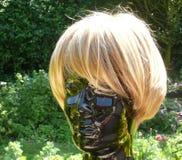 Parrucca dei capelli Immagine Stock Libera da Diritti
