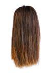 Parrucca dei capelli isolata Immagine Stock Libera da Diritti