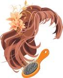 Parrucca e hairbrush illustrazione vettoriale