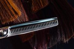 Parrucchiere professionista dello stilista di forbici sui precedenti di bei capelli sani Un esempio di un tester fotografie stock libere da diritti