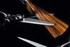Parrucchiere professionista dello stilista di forbici sui precedenti di bei capelli sani Un esempio di un tester fotografie stock