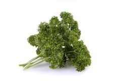 Parsley. Stock Images