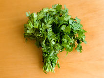 Parsley. Fresh curly parsley on the wooden table. Up view Stock Image