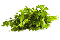 Parsley. Bunch parsley isolated on white Royalty Free Stock Photo