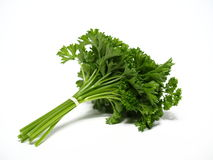 Parsley. Flavor ingredients for cooking Stock Image