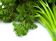 Free Parsley Royalty Free Stock Images - 2139039