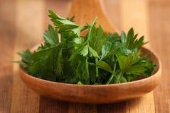parsley Arkivfoton
