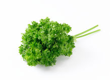Free Parsley Royalty Free Stock Photo - 26582715